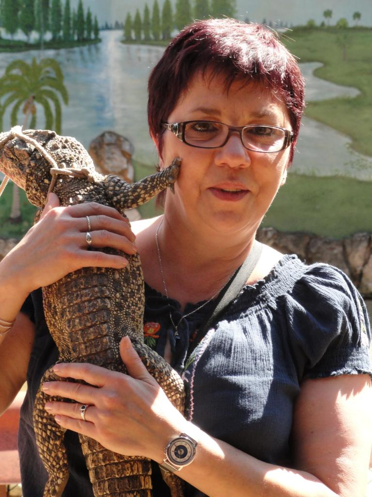 Elevage de crocodile